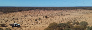 Exploring the Great Victorian Desert for malleefowl conservation